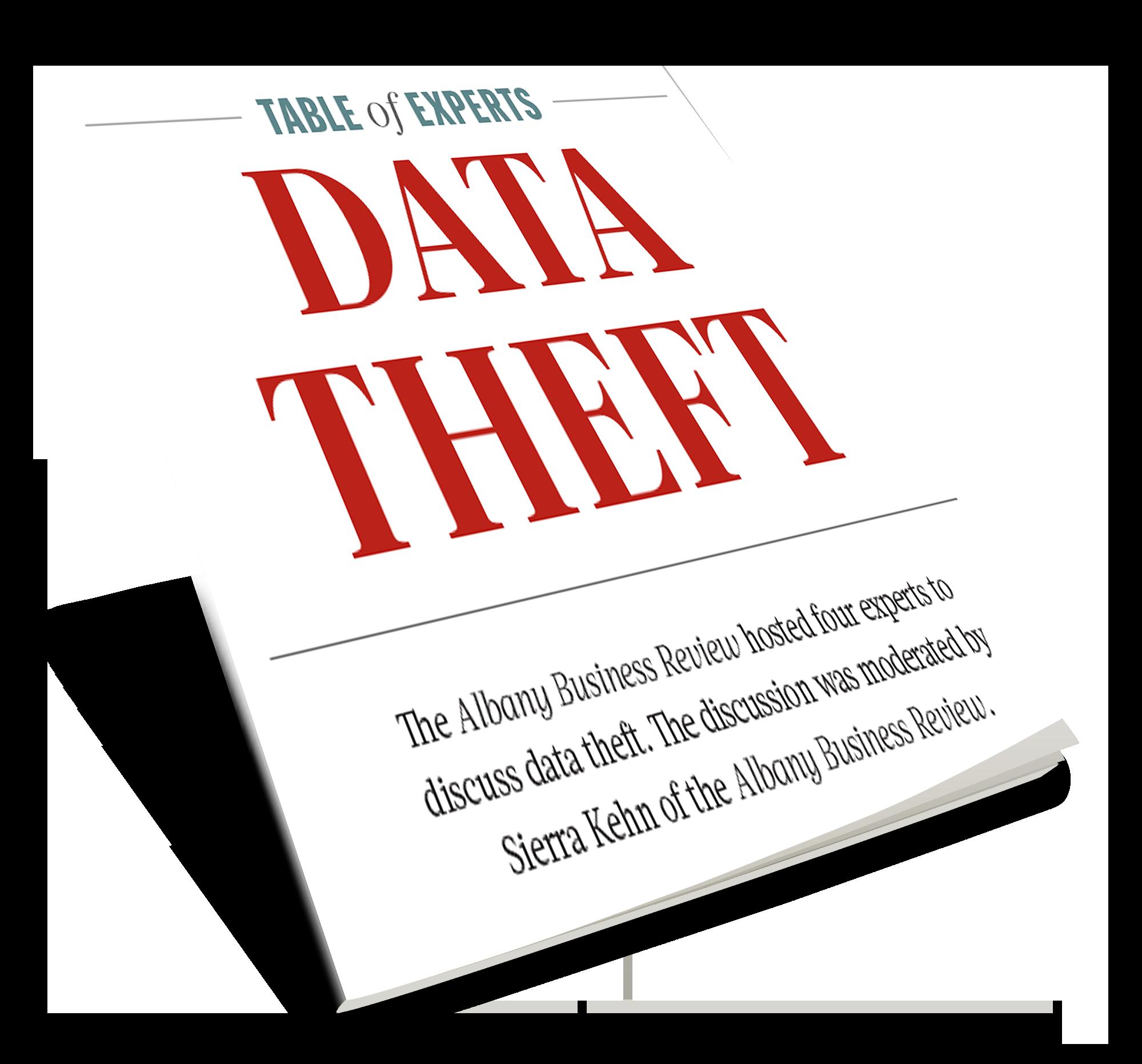 ToE_DataTheft_eBookCover